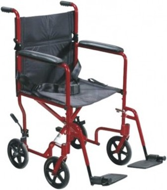 Companion Wheelchair