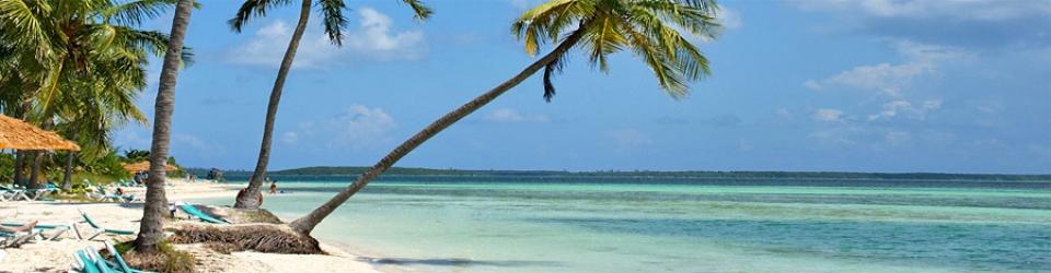 caribbean singles